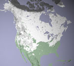 MODIS reflectance image of North America