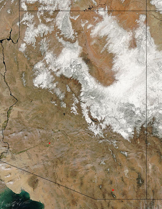 MODIS image of Arizona
