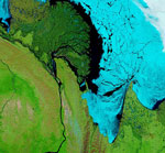 MODIS reflectance image of Russia