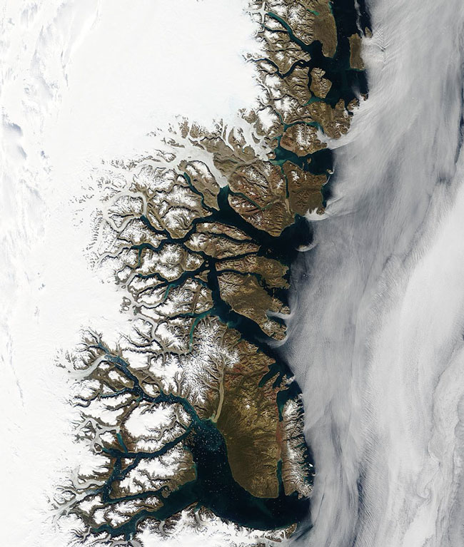 MODIS image of Greenland