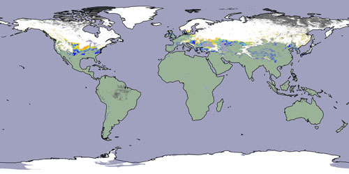 MODIS Snow Ice Global Mapping Project